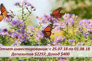 Отчет инвестирования: с 25.07.18 по 01.08.18