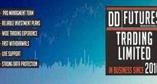 DDFutures: сколько заработали инвесторы