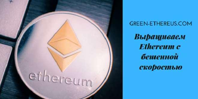 Green Ethereus — выращиваем Ethereum с бешеной скоростью — green-ethereus.com
